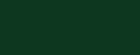 Fir Green Colour Sample