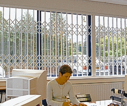 Seceuroguard 1000             security grilles for the office