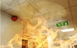 Fire Rated Steel Doorsets